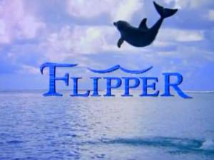 flipper300